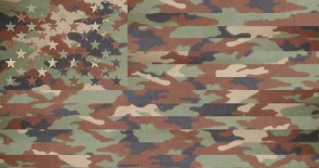 Renart L'<p>éveillé / Camouflage états-unien
