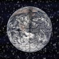 terre-cerveau